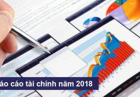 Báo cáo tài chính năm 2018 đã được kiểm toán